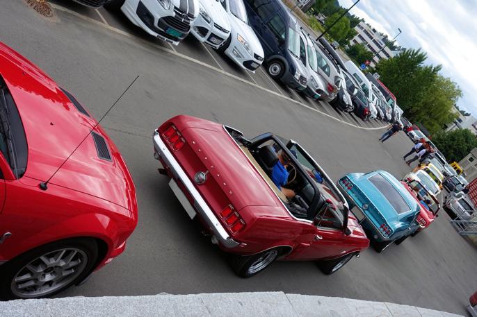 Kø av Mustanger på tur.